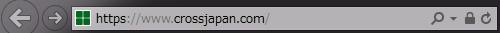 Internet Explorer インターネット エクスプローラー